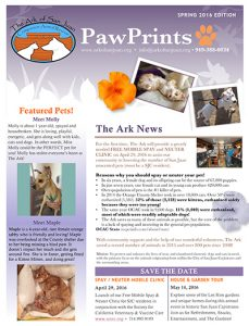 Animal Rescue Newsletter With Paw Prints
