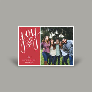 Family Portrait Color Block Holiday Card