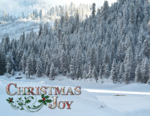 snowy landscape christmas joy holiday card
