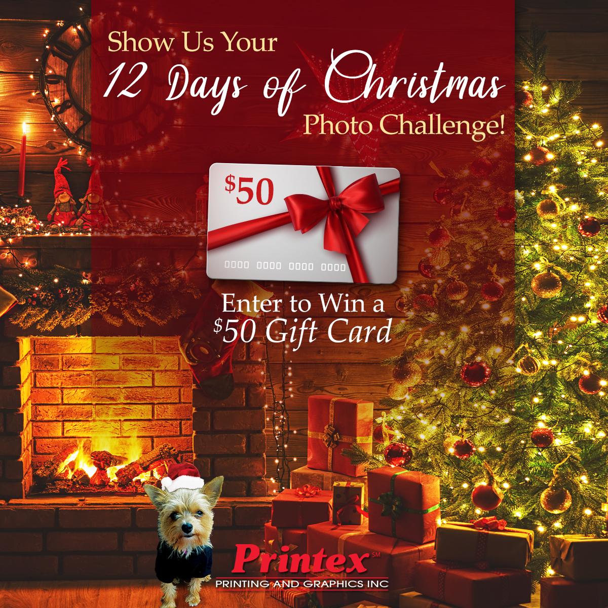 12 Days of Christmas Photo Challenge